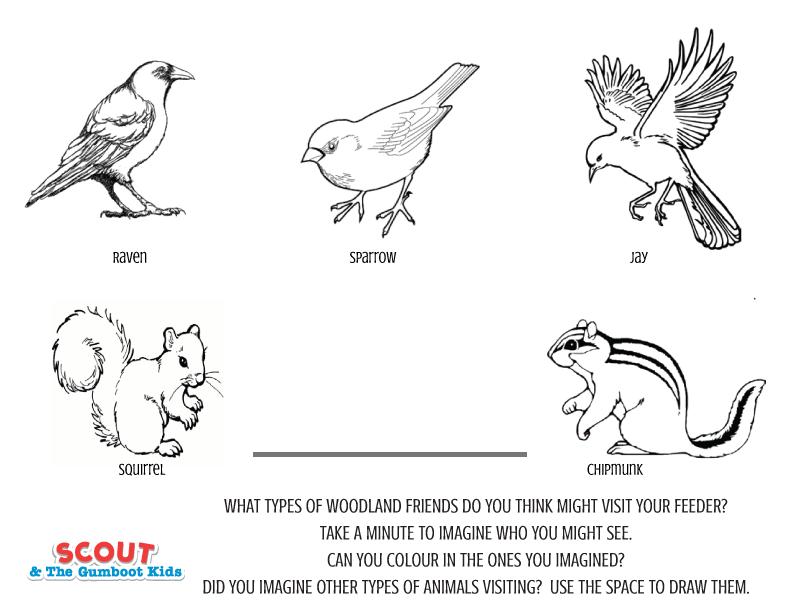 birdfeeder-printable.png