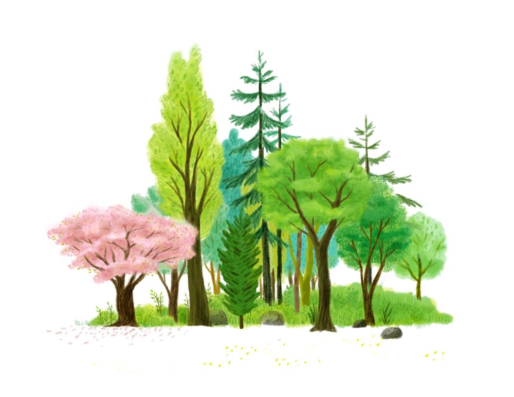 trees2.png