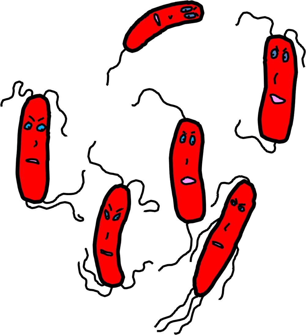 Bad Bactera.png