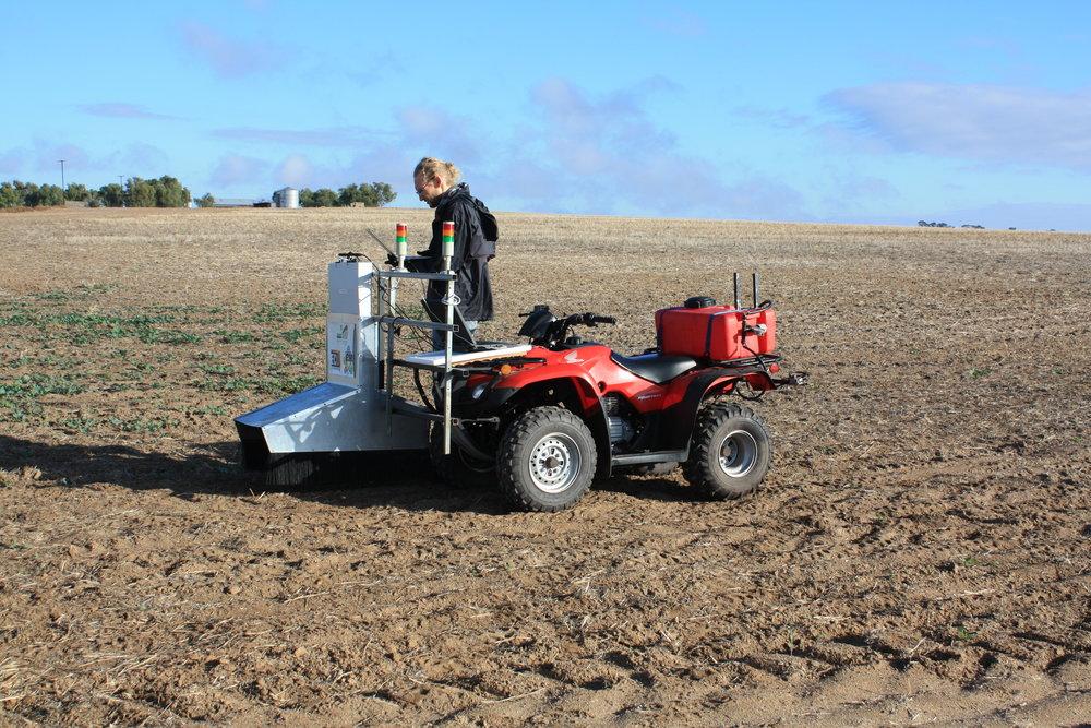 ECU researcher Ash farm.JPG