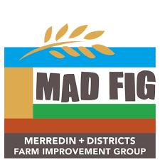 MADFIG Logo.png
