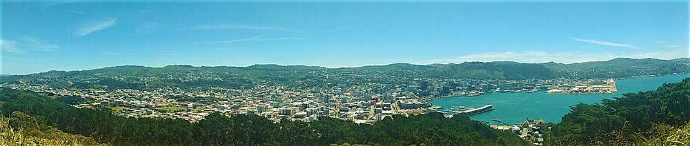 Views over Wellington from the Mt Victoria lookout one of the best things to do for free in Wellington city