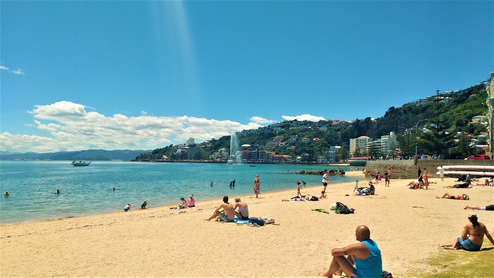 Oriental Bay, Wellington - free things to do in Wellington in summer!