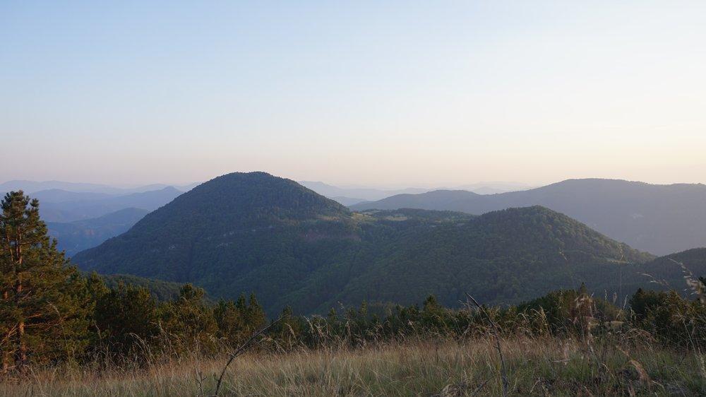 National Park Tara Serbia