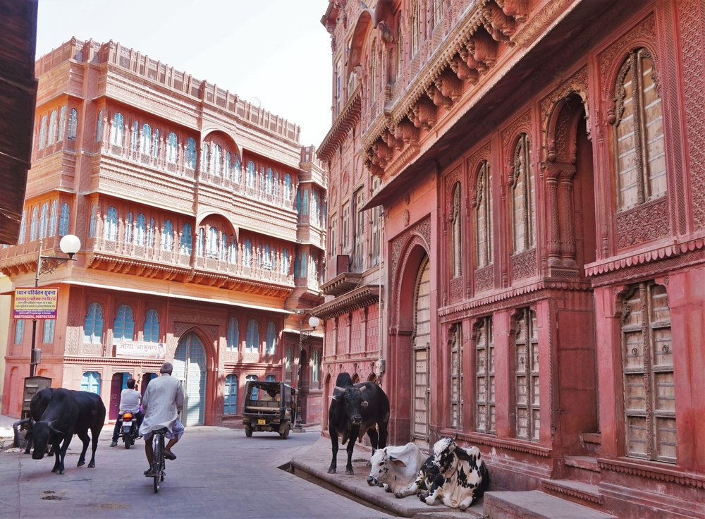 The small town Bikaner is worth a stop during your Rajasthan itinerary if you want to see the real India away from the tourist crowds.