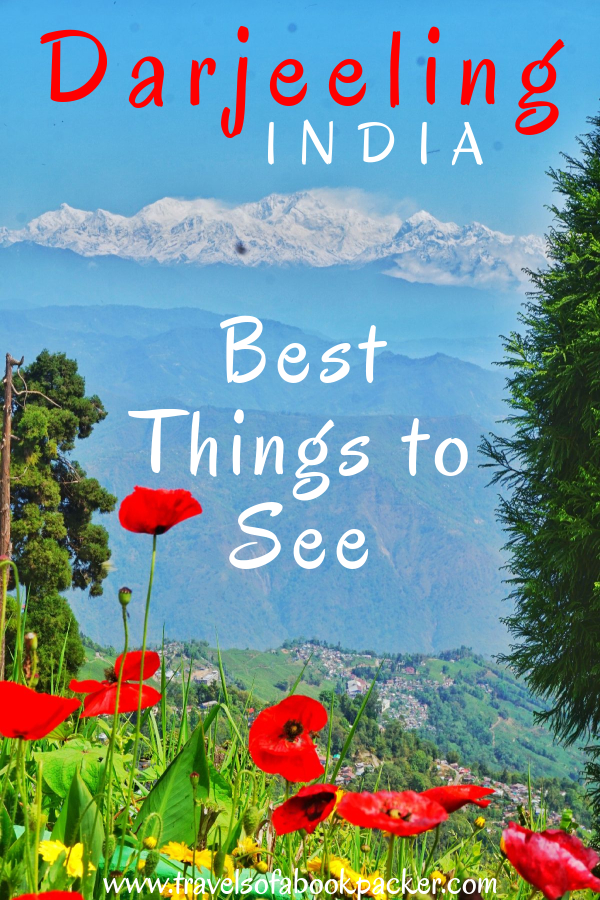 Travelling to Darjeeling? read about everything you need to know to plan a two day itinerary in Darjeeling. #darjeeling #india #tea #teaestate #bestteadarjeeling #darjeelingitinerary #bestplacesdarjeeling