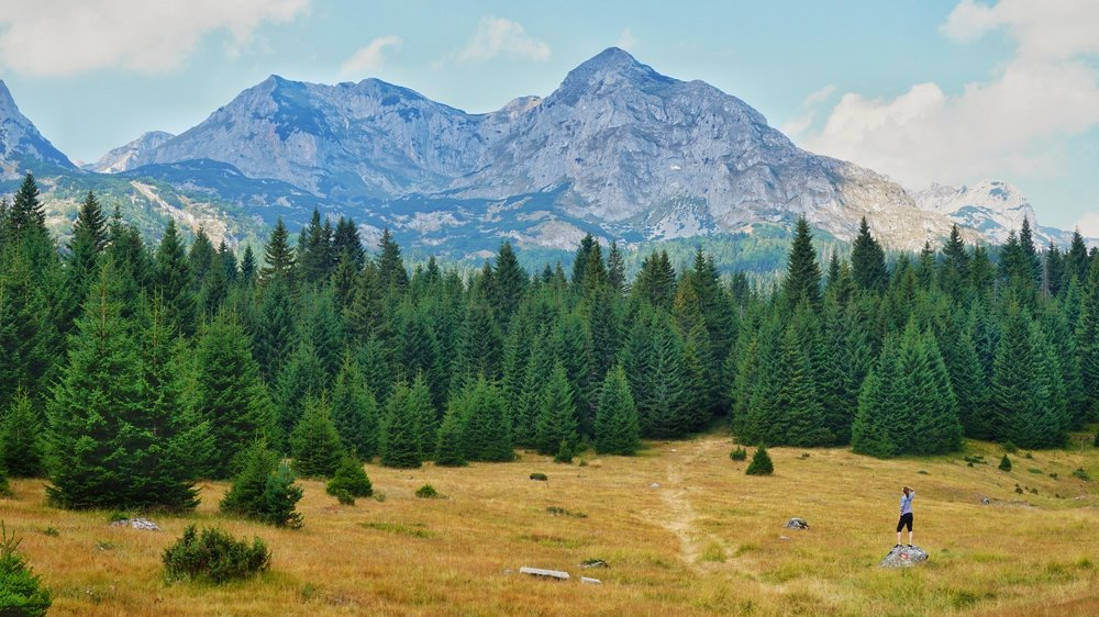 Hiking in the Durmitor National Park is one of the best day hikes in the Balkans. Trekking in the Balkans, Montenegro.
