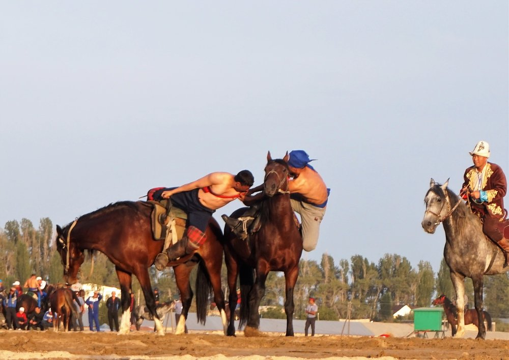 horse wrestling kyrgyzstan