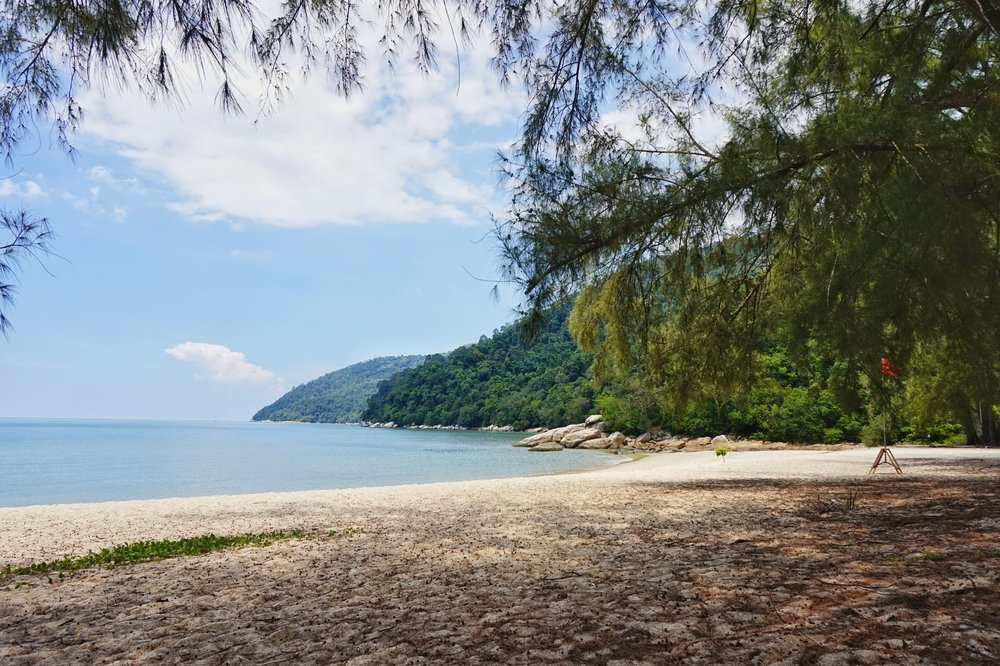 The Penang National Park is one of the best things to see in Penang!