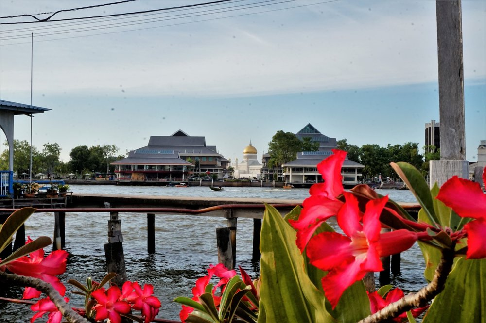 Visiting the water village in Bandar Seri Begawan is one of the best things to do in Brunei! Brunei best things to do.