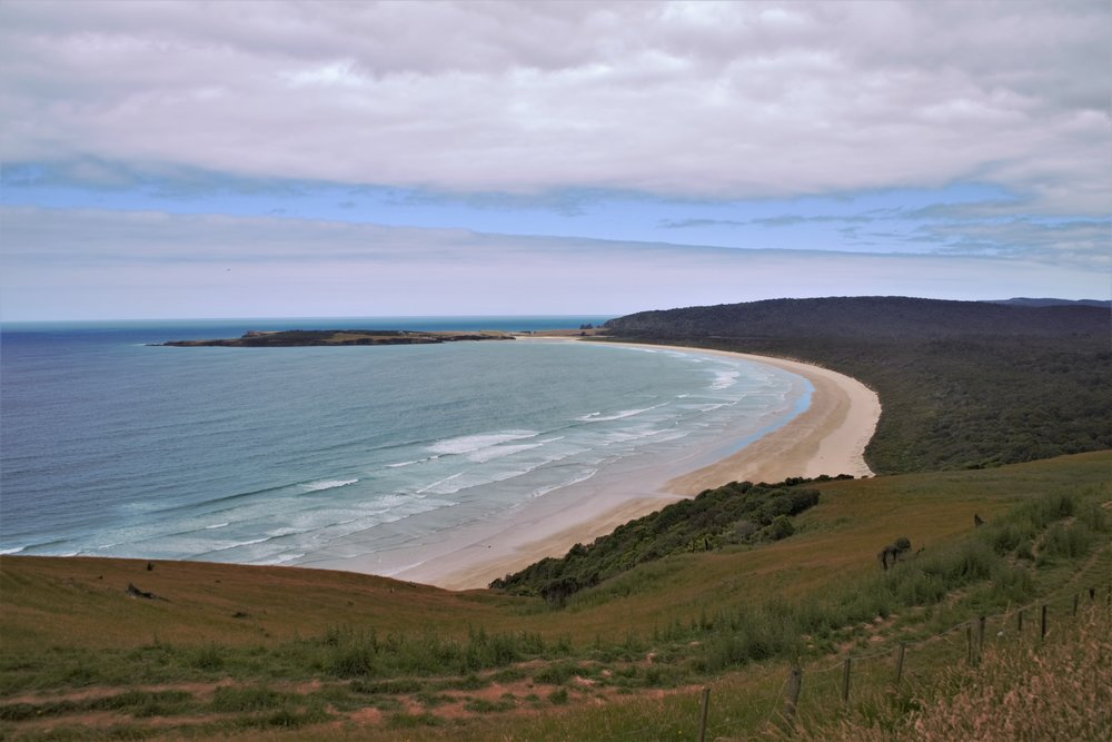 The stunning views over the coast line are one of the best things to do in the Catlins. These views will be part of your three day Catlins itinerary!