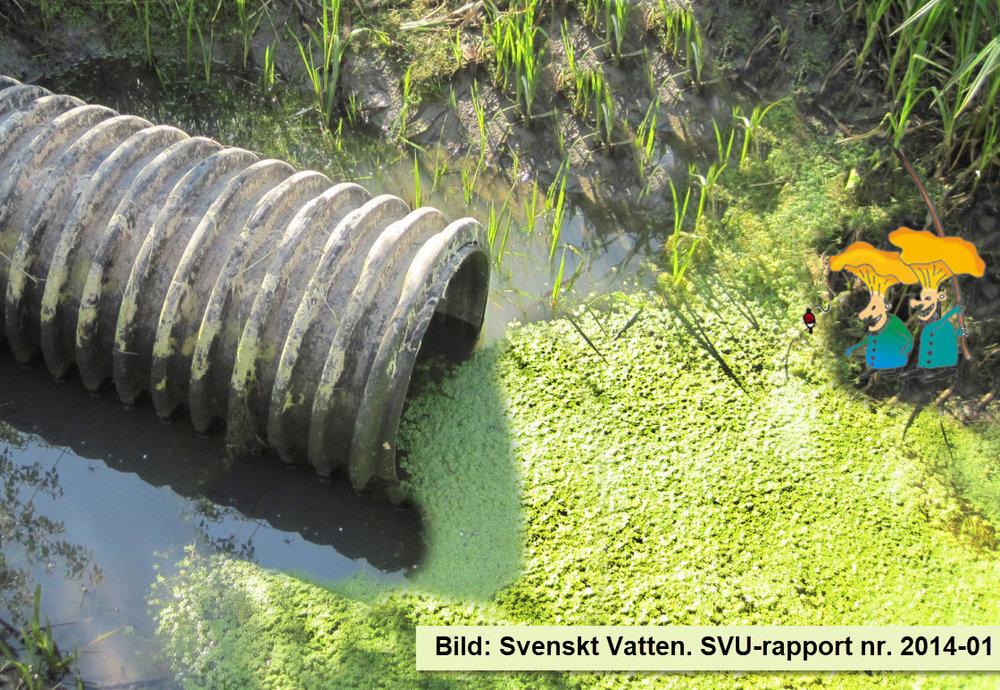 Bild på ett bräddavlopp från SVU-rapport nr. 2014-01.