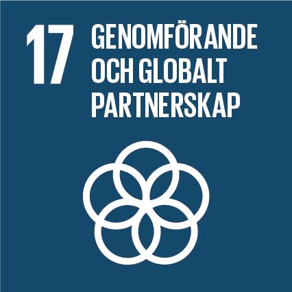 Mål 17 -Stärka genomförandemedlen och återvitalisera det globala partnerskapet för hållbar utveckling.