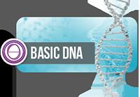Thumbnail_Basic DNA.png