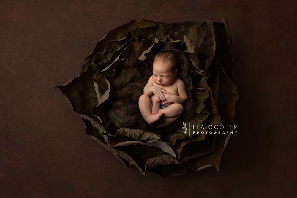 newborn-photography-willenhall-lea-cooper-photography-wolverhampton-baby-photographer-birmingham-west-midlands-uk-oliver--1.jpg