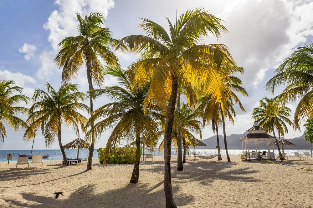 IMG_Palm Island (2).jpg