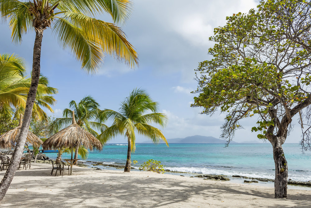 IMG_Palm Island.jpg