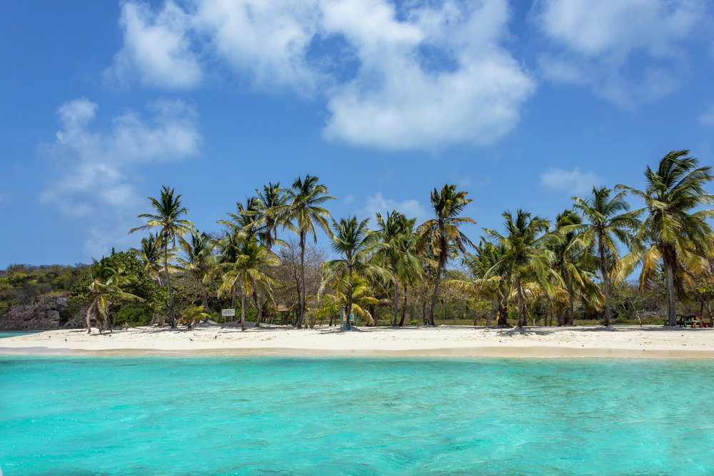 IMG_Tobago Cays.jpg