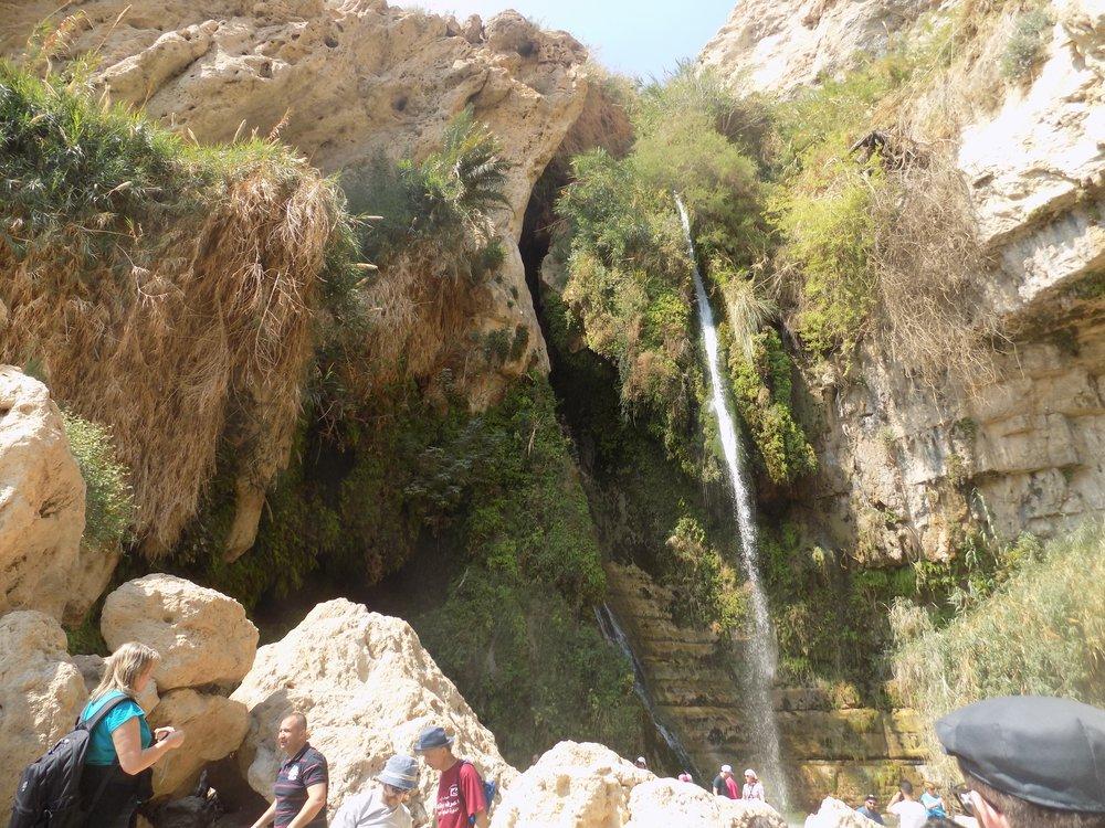 Ein Gedi, Israel