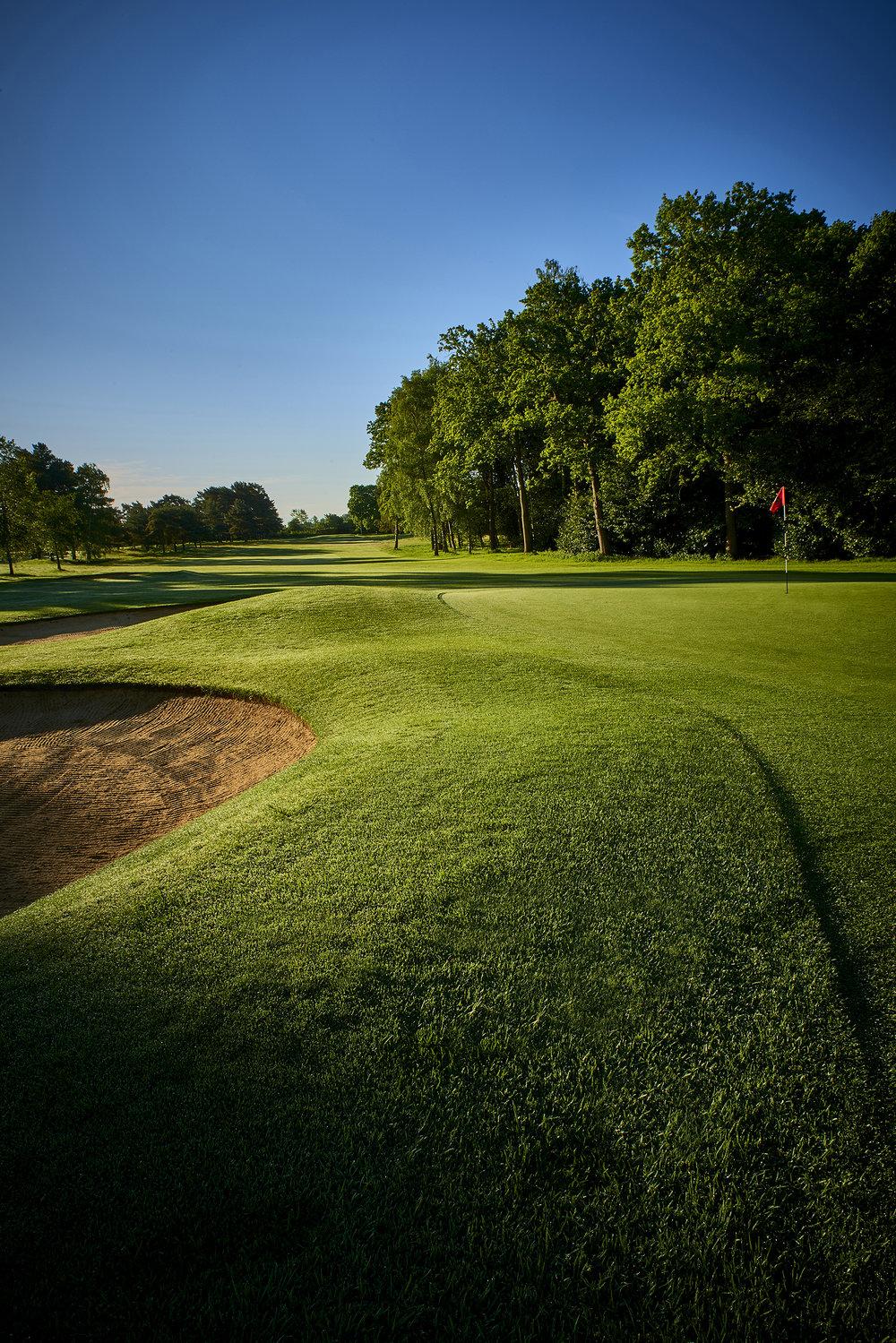 Golf Club 6.jpg