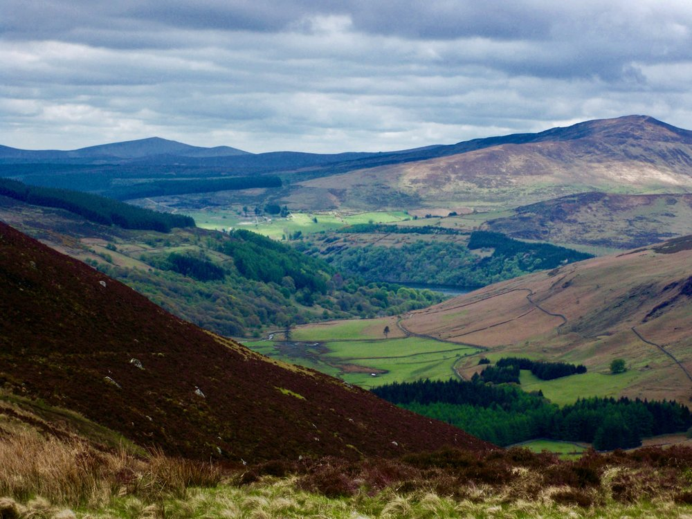 Wicklow Mountains National Park ~ Ireland