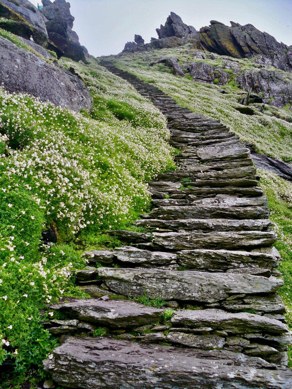 Skellig Michael ~ County Kerry, Ireland