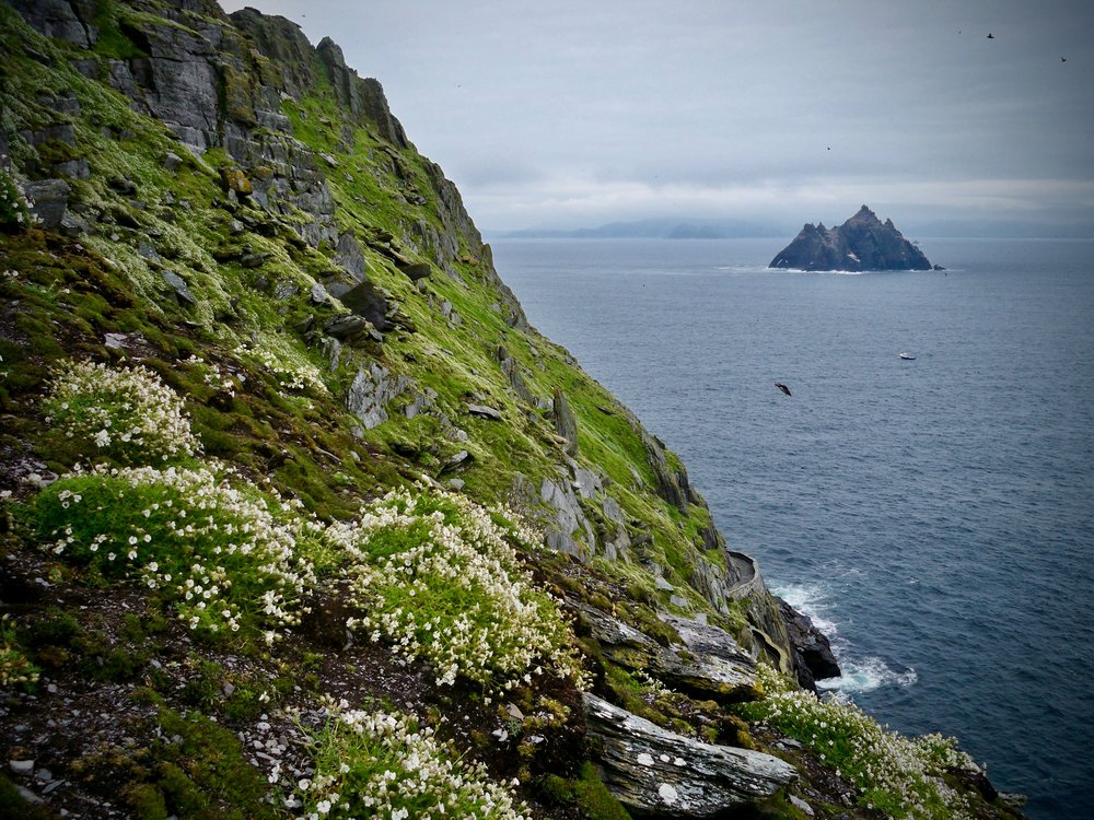Skellig Michael ~ Ring of Kerry, Ireland