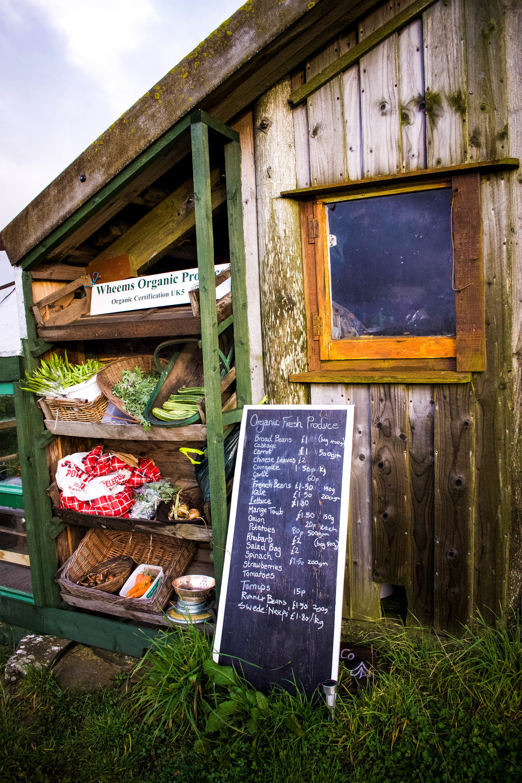Wheems Organic Farm, Orkney ~ Scotland