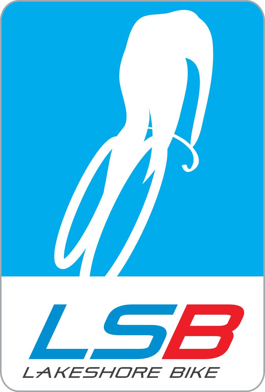 lsb-logo.jpg