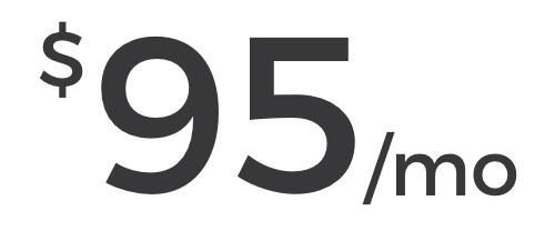 Website Pricing $95.jpg