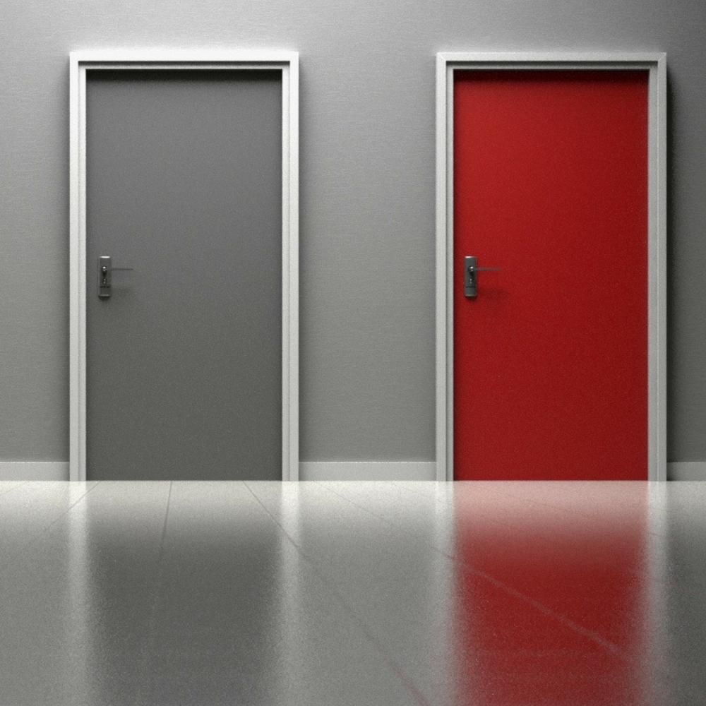 DOOR 1 OR 2.png