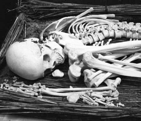 reed-burial_MONO.jpg