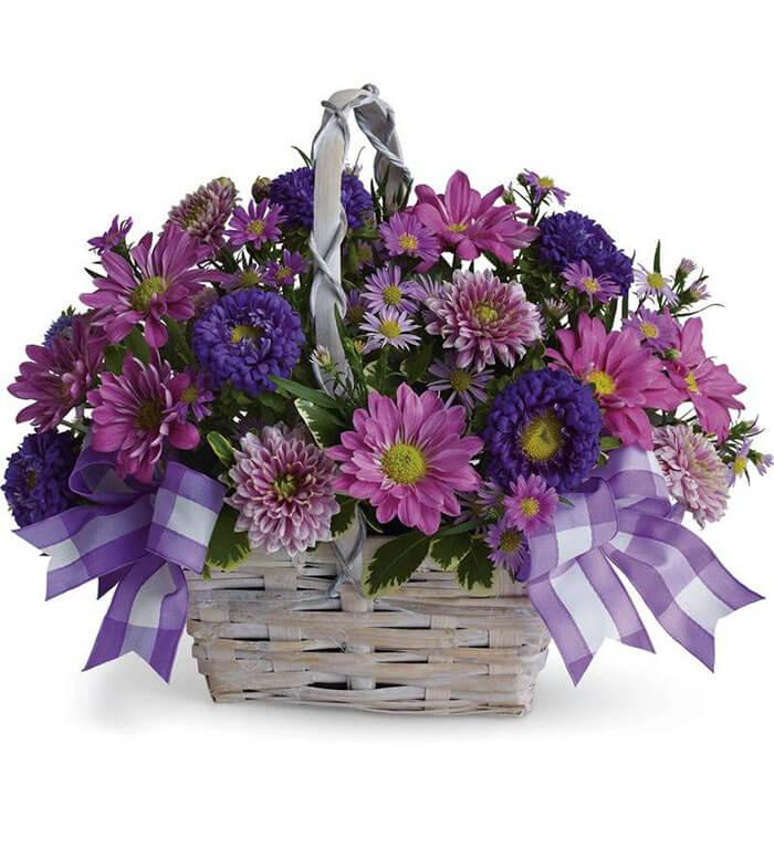 FlowerShopping.com Daisy Daydreams