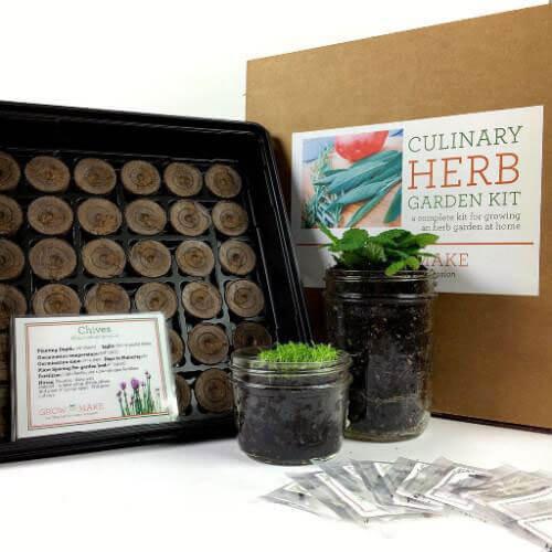 Grow and Make Culinary Herb DIY Garden Starter Kit