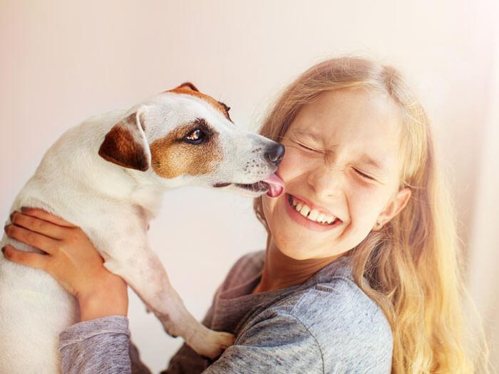 Just Natural Skin Care Dog Shampoo Skin Calming Oatmeal
