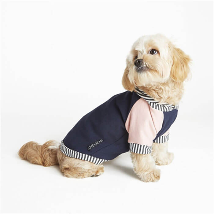 Our Green House Eco-Friendly Dog Clothing Hoodie