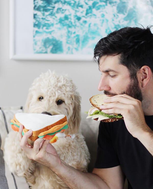 The Dapper Dog Box Sandwich Toy