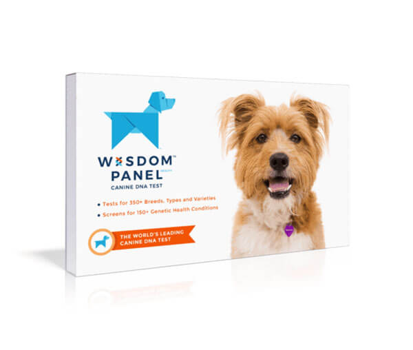 Wisdom Panel Health Canine Breed DNA Kit