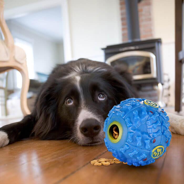 Letcome Dog Treat Dispensing Toy