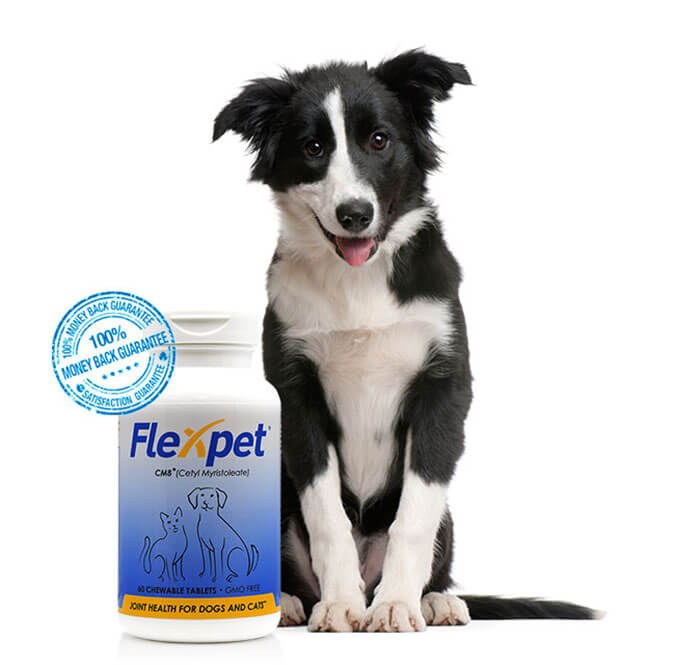 Flexpet Joint Care Supplement