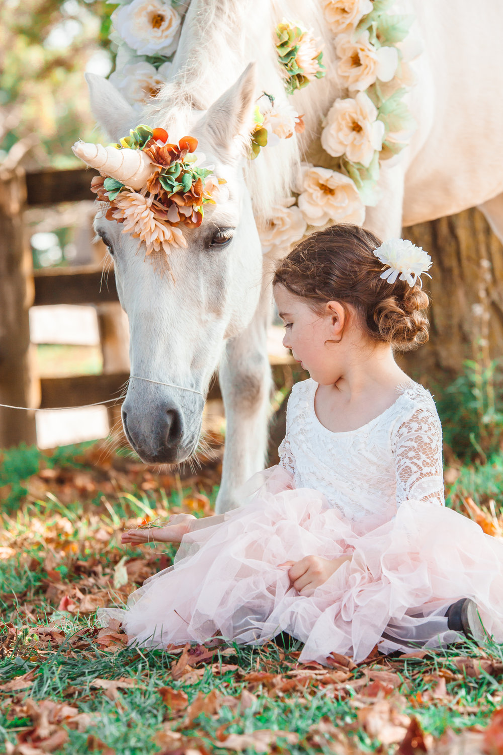 Amy D Photography Barrie Family & Children Photography Unicorn Mini Session-17.jpg