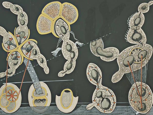 The Gramineous Bicycle Garnished with Bells the Dappled Fire Damps and the Echinoderms Bending the Spine to Look for Caresses -  Max Ernst, 1921