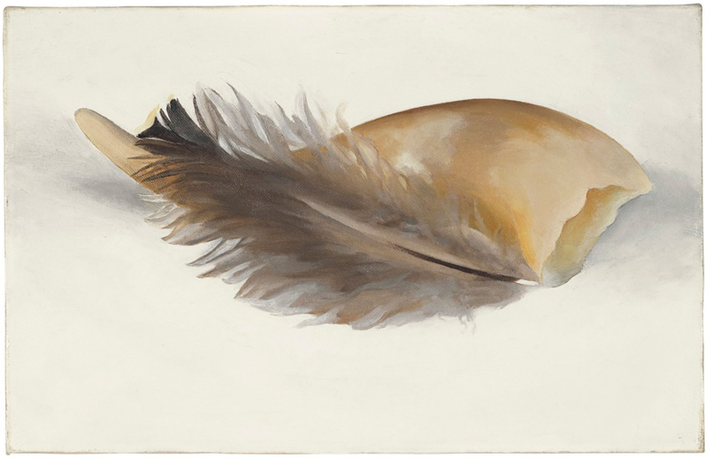 Horn and Feather , Georiga O'Keefe, oil on canvas, 1937