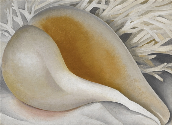 Shell (Shell IV, The Shell, Shell I) , Georgia O'Keefe, 1937