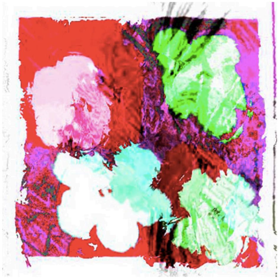 Anonymous_warhol-flowers , Cornelia Sollfrank