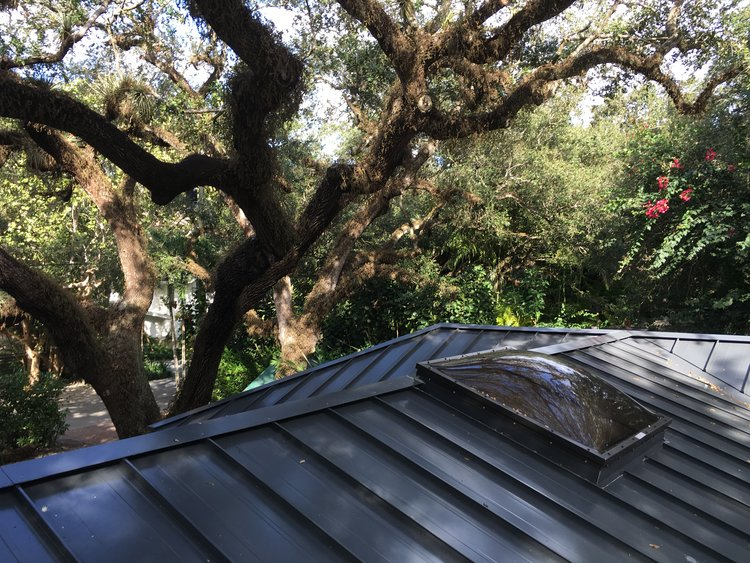 Coconut Grove Roof.jpeg
