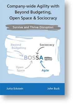 Bossa Nova - Beyond Budgeting, Open Space & Sociocracy. by Jutta Eckstein and John Buck