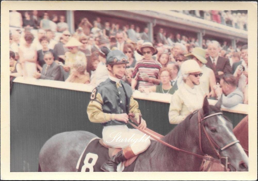 No8 Horse - 1950s Racing Image