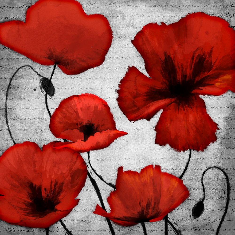CAG89561_RedPoppies_19.5x19 copy.jpg
