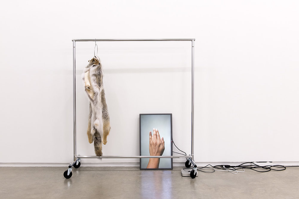 Duane Linklater ,  The place I seek to go , 2014. Coyote fur, garment rack, hanger, flat screen TV, Mac Mini, HD video loop, cables. Installation dimensions: 335 x 168 x 52 cm. Image: courtesy of Catriona Jeffries, Vancouver. Photo: SITE Photography.